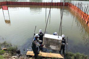 Quảng Ninh: Xử lý môi trường nước bằng công nghệ thiên nhiên Bakture tại TP. Hạ Long đạt kết quả khả quan
