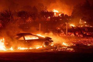 Cháy rừng ở Mỹ, 9 người thiệt mạng, một thị trấn bị thiêu rụi