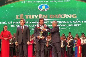 Bình Điền đóng góp tích cực vào sự nghiệp phát triển nông nghiệp