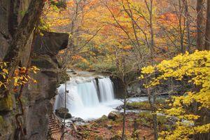 Du ngoạn qua 6 vườn quốc gia đẹp nhất Nhật Bản