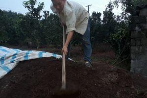 Tân kỳ: Phân hữu cơ giúp cải tạo đất, tốt cho cây trái, thu lãi cao