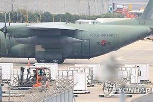 Hàn Quốc đáp lễ Triều Tiên bằng việc gửi tặng 200 tấn quýt