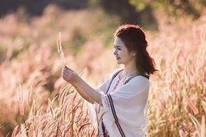 Ngoài Đà Lạt, còn nơi nào có đồi cỏ hồng đẹp mê mẩn?