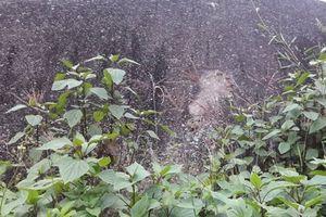Sở VH-TT-DL Lào Cai 'bác' thông tin tẩy xóa 'hoa văn' trên bãi đá cổ Sa Pa