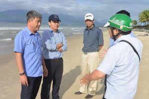 Đà Nẵng: Cá chết có thể do nổ mìn ngoài biển