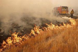 California (Mỹ) tan hoang vì cháy rừng
