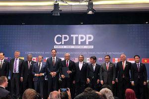 Việt Nam cần phương án ứng phó tác động bất lợi từ CPTPP