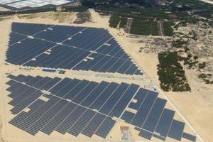 Quảng Bình: Phát triển điện gió, điện mặt trời không được ảnh hưởng đến sản xuất nông nghiệp, du lịch, môi trường