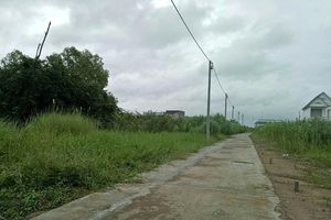 Cần Thơ: Xử lý trách nhiệm các khu dân cư tự phát