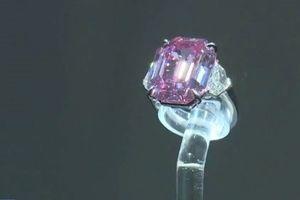 Cận cảnh viên kim cương đặc biệt trị giá 50 triệu USD