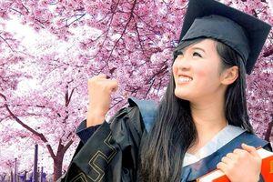 Hà Nội cảnh báo thông tin sai lệch về du học Nhật Bản