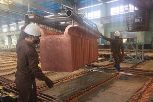Luyện đồng Lào Cai (Vimico): Đổi mới công nghệ nâng cao năng suất lao động