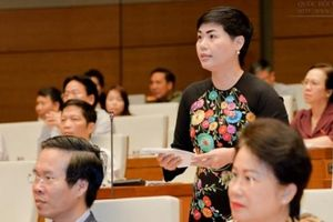 ĐBQH: Sửa Luật quản lý thuế, đừng gây thêm áp lực cho dân