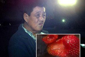 Người phụ nữ gốc Việt cắm kim vào dâu tây ở Úc nghi vì thù sếp