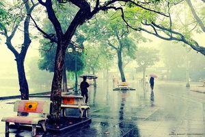 Ngày mai 13/11, Hà Nội nhiều mây, có mưa nhỏ