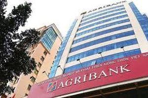 Agribank: Chuẩn bị bán vốn tại OCB, tin đồn phá sản là thất thiệt