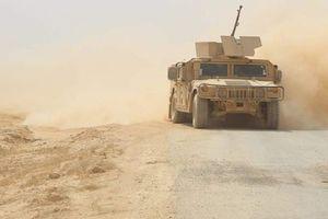 Bị IS 'đánh đau', lực lượng người Kurd tập trung khôi phục sinh lực