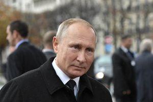 TT Putin: Châu Âu thành lập quân đội riêng là lẽ đương nhiên