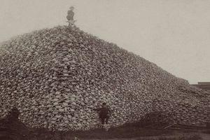 Tò mò loạt ảnh lịch sử về nước Mỹ ít được biết đến