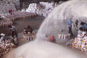Đón đầu tư từ Australia, gạo Việt nhiều cơ hội nâng sức cạnh tranh