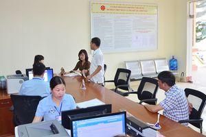Phường Việt Hưng (TP Hạ Long): Lan tỏa các mô hình thiết thực, hiệu quả