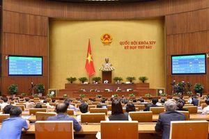Truyền thông thế giới đưa tin về Quốc hội Việt Nam phê chuẩn CPTPP