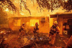 Chưa có thông tin có nạn nhân người Việt trong thảm họa cháy rừng tại Mỹ