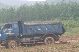 Công ty Hòa Phát Quảng Bình thừa nhận đổ phân tươi ra môi trường