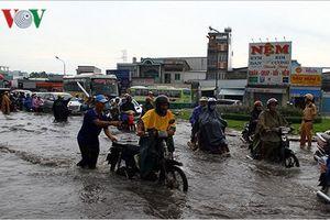 Miền Bắc ấm dần, nhiều nơi ở miền Trung và miền Nam có mưa rào