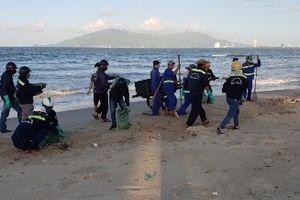 Đà Nẵng tìm nguyên nhân cá chết dạt vào bãi biển