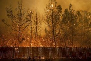 Số người thiệt mạng do cháy rừng tại California tiếp tục tăng
