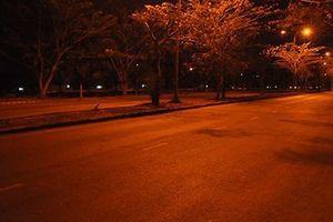 TP HCM: Bị cướp xe khi quan hệ tình dục đồng tính ở đường vắng