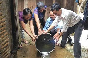 Bùng phát nhiều ổ dịch bệnh ở Quảng Nam