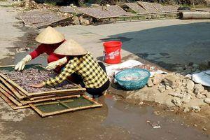 Chế biến hải sản gây ô nhiễm