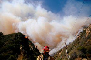Người Việt bị ảnh hưởng vì cháy rừng California