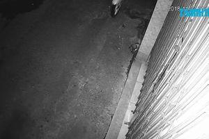 Điều tra vụ một gia đình ở Đà Nẵng bị 'khủng bố'