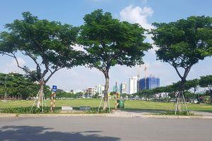 Đà Nẵng 'quyết' hủy kết quả đấu giá khu đất vàng của VIPICO