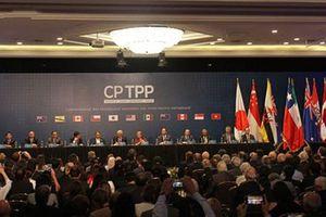 Cơ hội mới từ CPTPP