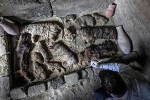 Ghê rợn hàng chục xác ướp mèo, bọ hung trong mộ cổ Ai Cập