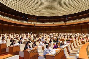 Đại biểu Quốc hội: Phòng, chống tham nhũng phải siết chặt trách nhiệm người đứng đầu