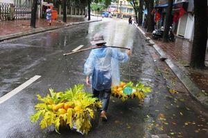 Dự báo thời tiết 14/11: Hà Nội đêm và sáng tiếp tục có mưa