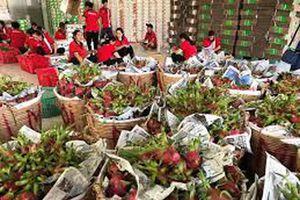 Khảo sát đánh giá chất lượng doanh nghiệp Việt Nam hội nhập CPTPP: Công ty Cổ phần xuất nhập khẩu Bình Thuận
