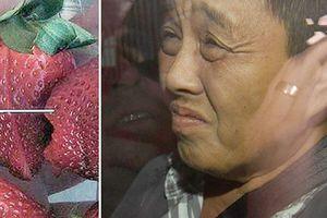 Australia: Phụ nữ gốc Việt hầu tòa vì nhét kim vào dâu tây