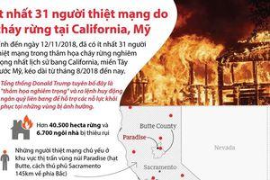 Cháy rừng tại California, ít nhất 31 người thiệt mạng