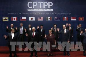 CPTPP có phải là 'trái ngọt' với Canada?