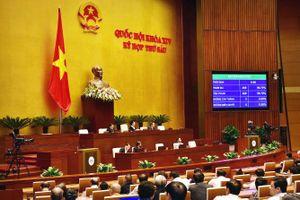 Quốc hội phê chuẩn Hiệp định CPTPP: Công khai thông tin mua sắm trên Báo Đấu thầu