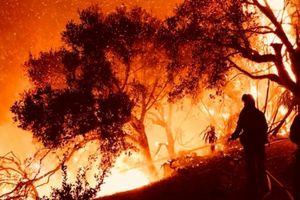 Ít nhất 44 người chết trong 'đại thảm họa' cháy rừng ở California
