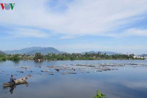 Dân lấn chiếm lòng sông, ồ ạt thả phao, bè nhử vẹm ở Khánh Hòa