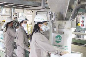 Lào Cai thu hồi 50.000m2 đất của Công ty Cổ phần DAP