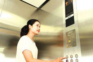 Thương thảo hợp đồng Gói thầu thang máy trụ sở UBND tỉnh Cà Mau: Cái sảy nảy cái ung